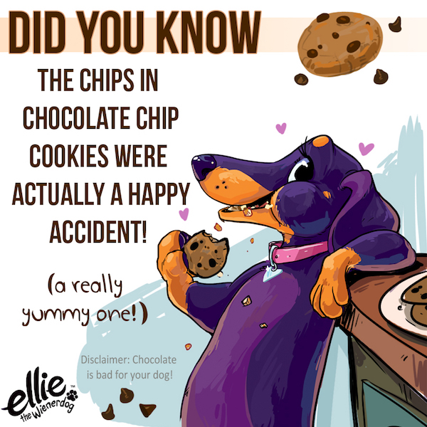 Did you know? Chocolate Chip Cookies Were Created by Accident!